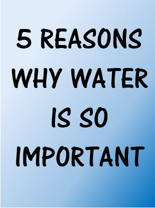 Why water is so important